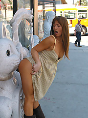 PublicFlash.com - Public Nudity Where Not Allowed