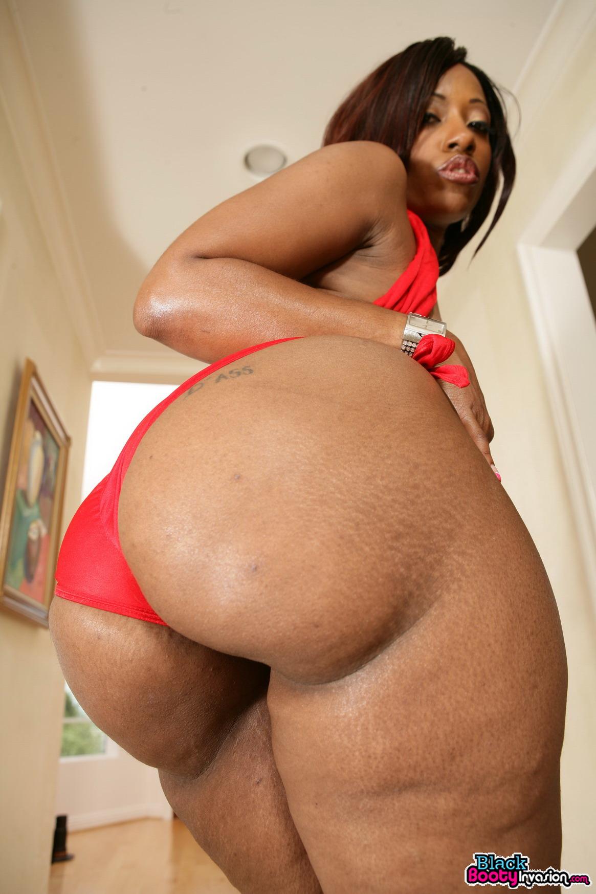 Fat black butt free download sex videos