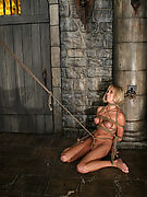 Free Pics from Hog Tied