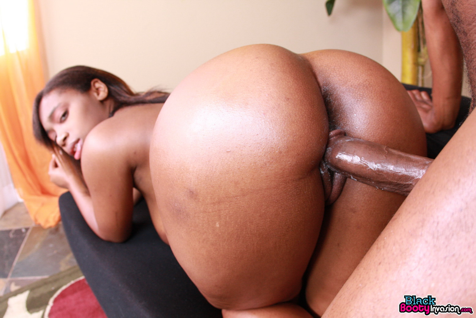 Black big booty fuck gif download exploited video