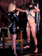 Domme Desires -Sweet Domination