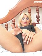 WildShemale.com - Free Shemales and Transsexuals Picture Gallery